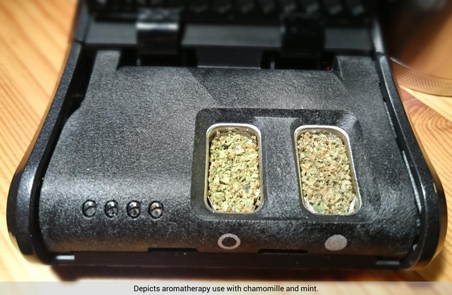 Haze Dual V3 Vaporizer Full Ovens